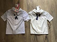 Блузка для девочек с гипюром (2706/11)