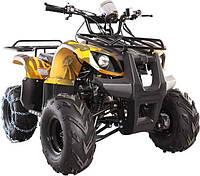 Квадроцикл Spark SP 250-4