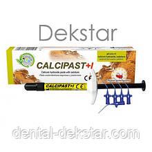 Calcipast+I (Кальціпаст+І) паста для тимчасового пломб.кореневих каналів, 2.1г