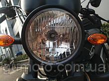 Мотоцикл HORNET Alpha 125 куб.см, черный, фото 2