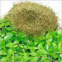 Экстракт листа эвкалипта сухой,10 грамм.