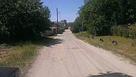 Участок с коммунникациями делится на 2 Путровка центр
