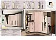 Шкаф 600 (1950) Арья (Мастер Форм) Киев, фото 3