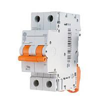 Автоматический выключатель General Electric Domus 6 kA 2P, C