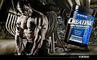 Креатин Creatine Monohydrate (300 г) Dymatize Nutrition, фото 4