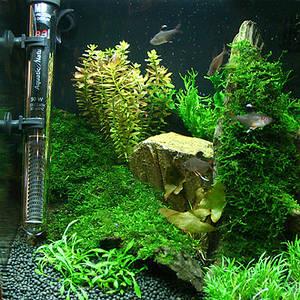 обогрев и охлаждение аквариума