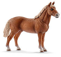Лошадь Моргана, жеребец, игрушка-фигурка, Schleich