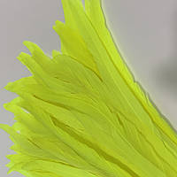 Перо петуха, длинна 25-30см,  цвет Tropic Lime, 1шт