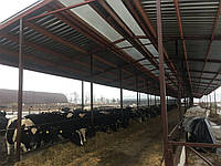 Строительство,ремонт и реконструкция ферм КРС,свиноферм.пром строений +