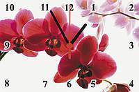 """Настенные часы МДФ   кварцевые """"Дикая орхидея"""", фото 1"""