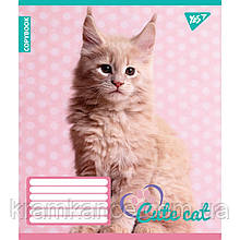 """Тетрадь 12 листов YES  """"CUTE CAT"""" линия 763924"""