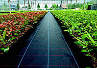 Агроткань п/п 5,15 х100м 100г/м.кв.(БЕЛЬГИЯ), черная (направляющие полосы -зеленые)