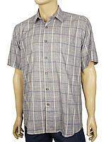 Серая мужская рубашка Negredo 1039#28 в крупную клеточку