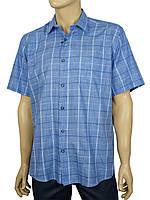 Мужская летняя рубашка Negredo 1039#29 classic blue в синем цвете