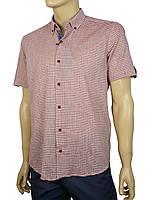 Стильная мужская рубашка Negredo 9046#59 лето