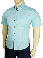 Летняя мужская рубашка Negredo ВTL-1043 Slim короткий рукав