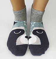"""Женские стрейчевые носки """"Calze Vita"""". Енот и мышка. Турция., фото 1"""
