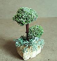 Декоративное дерево из мха цетрарии