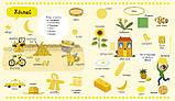 Книга детям Агнес Бессон: Цвета и формы Для детей от 3 лет, фото 2