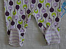Высокие ползунки хлопковые для девочки р. 62-80 см (Nicol, Польша), фото 5