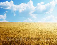ТД Фаворит - сельхозтехника, средства защиты растений, посевной материал