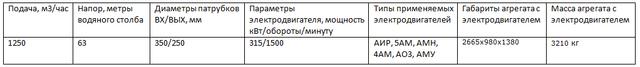 1Д1250/63 насос
