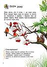 Енциклопедія дошкільника: Природа, фото 4
