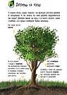 Енциклопедія дошкільника: Природа, фото 6