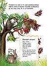 Енциклопедія дошкільника: Природа, фото 5