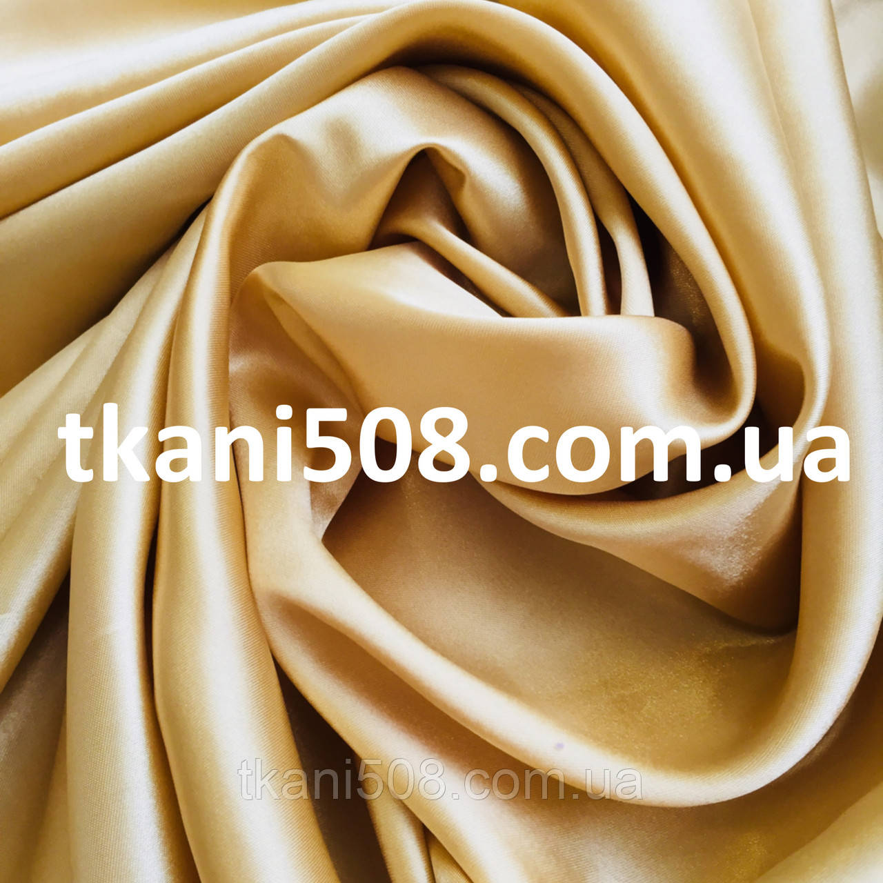 Атлас Обычный золотистый (24)