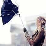 9 советов о том, как выбрать качественный зонт
