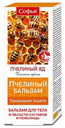 Софья бальзам д/тела Пчелиный с пчелиным ядом 75 мл, фото 2