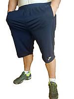 Шорты/Бриджи мужские ADIDAS трикотаж - большие размеры 3XL,4XL,5XL,6XL Украина карманы на молнии, синие