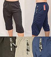 Бриджи мужские однотонные трикотажние XL, 2XL, 3XL Венгрия 65% хлопок пояс на резинке и шнурке