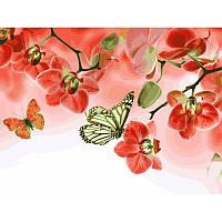 Картина по номерам Бабочки и красные орхидеи 30Х40см Babylon VK013