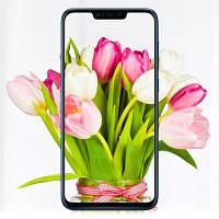 Мобильный телефон ASUS ZenFone Max (M2) ZB633KL 4/32 GB Midnight Black (ZB633KL Midnight Black)