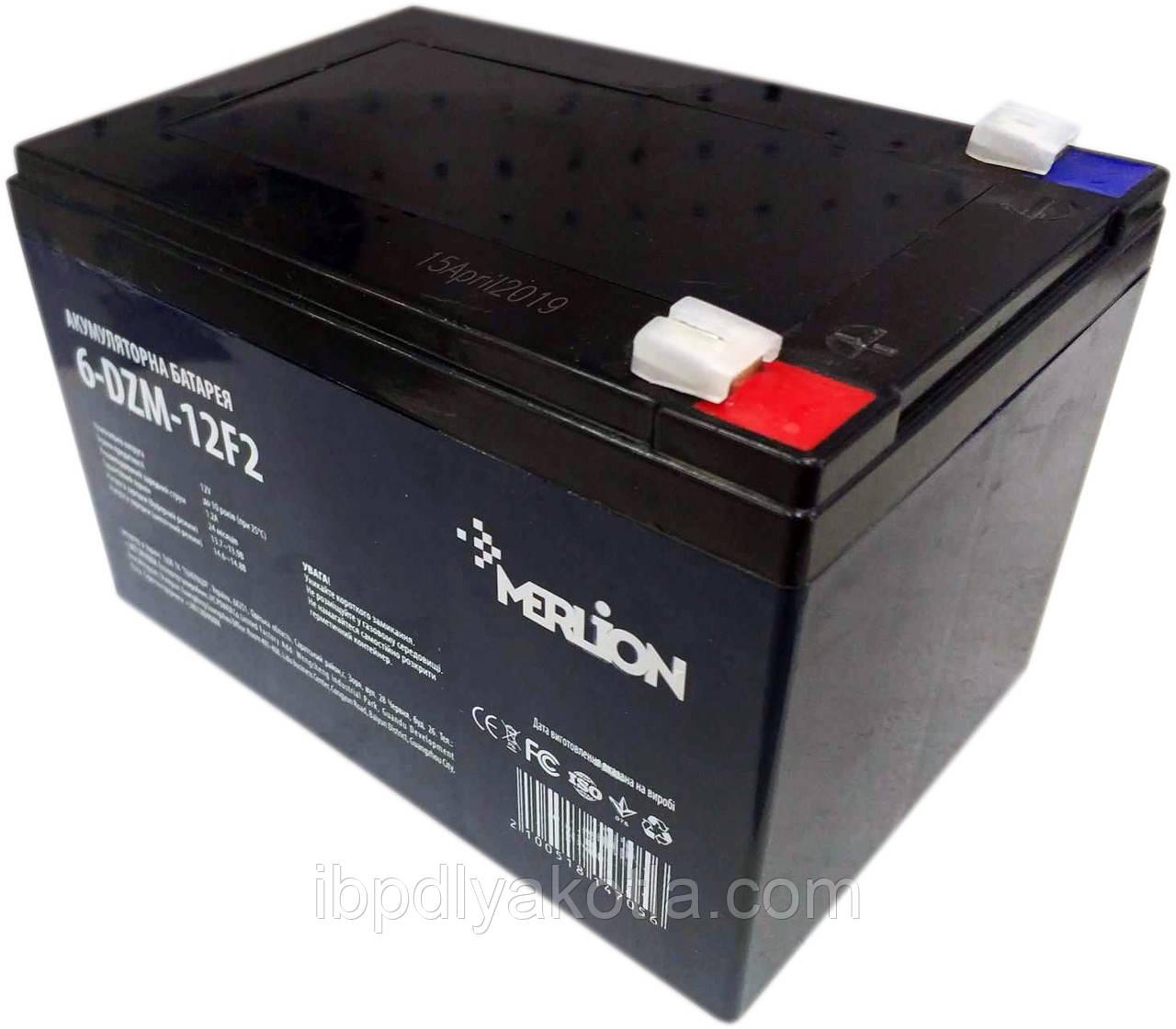 Merlion 6-DZM-12 12v 12ah, тяговый
