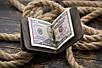 Зажим для денег кожаный Stayer, серый, фото 6