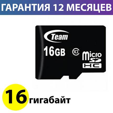 Карта памяти micro SD 16 Гб класс 10, Team (TUSDH16GCL1002), память для телефона микро сд, фото 2