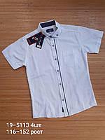 Рубашки подростковые  (С 116-152 рост)