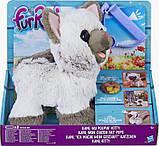 Интерактивная игрушка Забавный котёнок Ками Друг щенка Пакс FurReal Friends  Kami My Poopin Kitty, фото 3