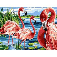 """Картина по номерам, картина-раскраска """"Фламинго на озере"""" 30Х40см VK207"""