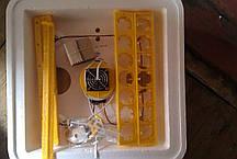 """Инкубатор с автопереворотом яиц """"Веселое семейство 2 ВПТ"""", фото 2"""