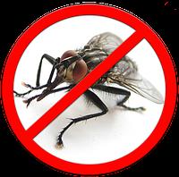 Уничтожение мух на срок до 3 месяцев