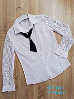 Блузка школьная  на девочек  р.7-10 лет  купить оптом школьную форму