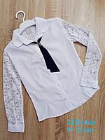 Блузка школьная  на девочек  р.9-12 лет  купить оптом школьную форму