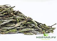 Бай Му Дань (дикорастущий), белый чай, фото 1