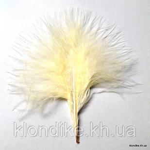Перья декоративные, 8-12 см, Цвет: Желтый (20 шт.)