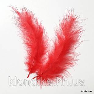 Перья декоративные, 11-15 см, Цвет: Красный (20 шт.)