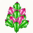 Воздушный шар в форме кактуса 73 см.цвет зеленый, фото 4